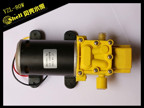 80W diaphragm pump